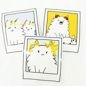 SnapCats